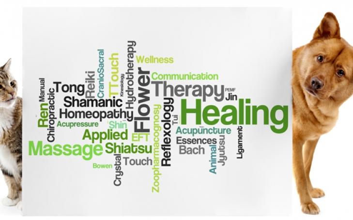 Alternative Healing Modalities