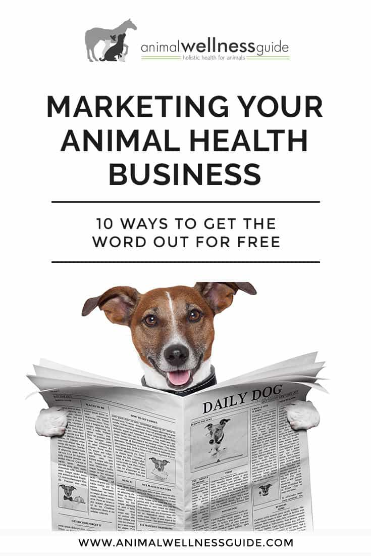 Creative (and free!) marketing ideas for your animal / pet business.