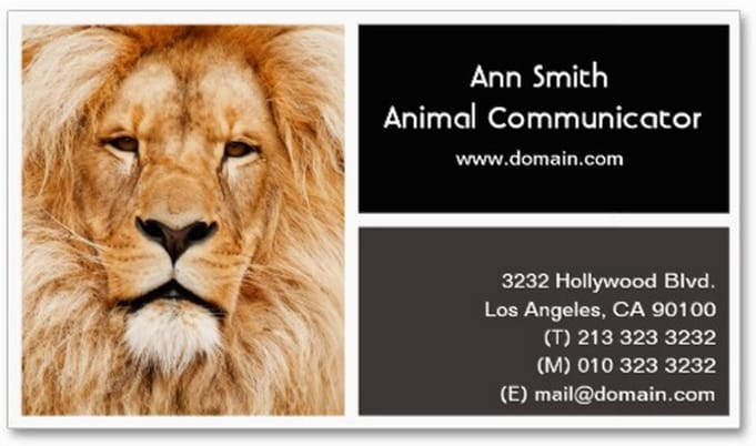 Animal communicator business card back