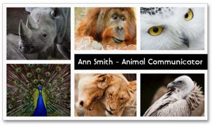 Animal-Communicator-business-cards-front