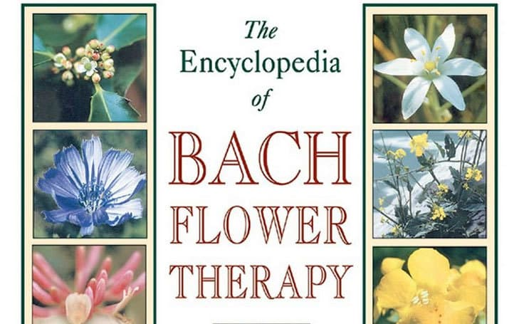 Bach Flower Therapy: A Non-Invasive Treatment Method For Both Humans and Animals