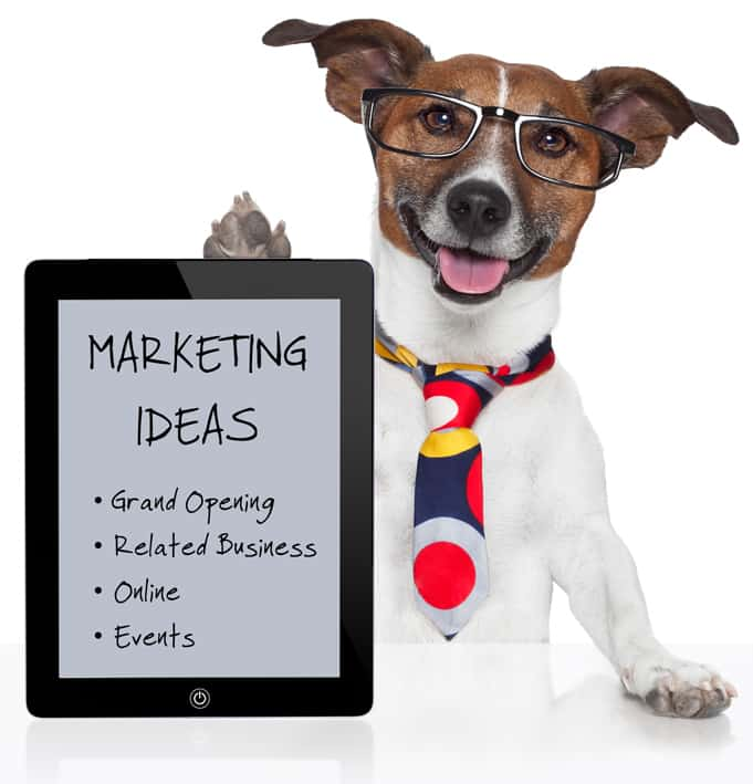 Marketing Your Business: 6-More-Marketing-Ideas
