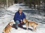 Animal Wellness Guide Guest Post Series: Linda Jackson