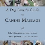 A-dog-lovers-guide-to-canine-massage-1