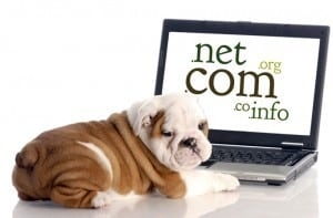 Blogging for beginners: Domain Names and Web Hosting