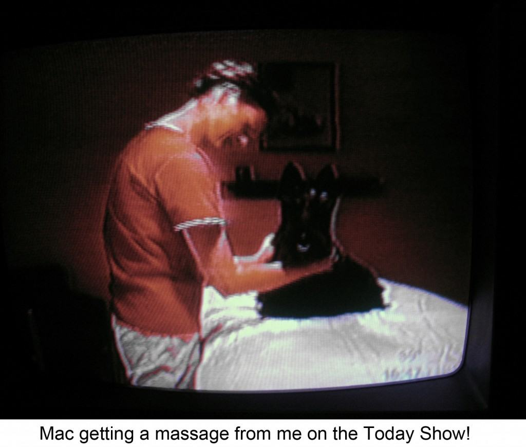 Bancroft School of Massage: Mac And I on TV