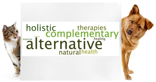 New Series: Alternative Therapies