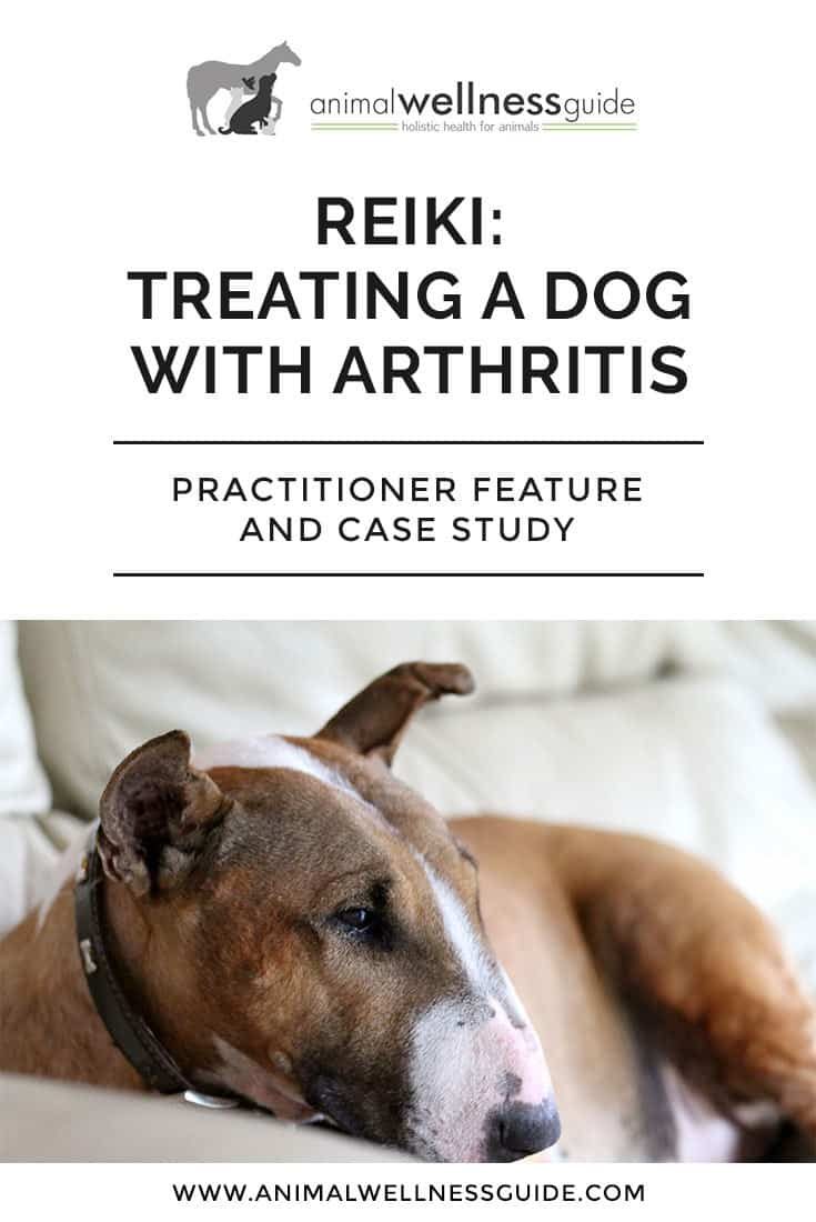 Case study where the practitioner uses Reiki to provide arthritis relief for a dog.