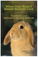 When Your Rabbit Needs Special Care