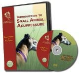 Introduction to Small Animal Acupressure