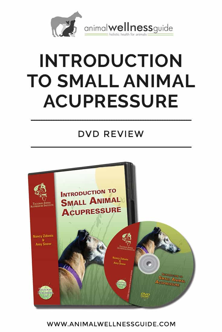 Our review of the Introduction to Small Animal Acupressure DVD