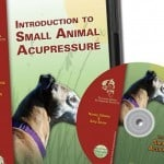 Introduction-to-small-animal-acupressure