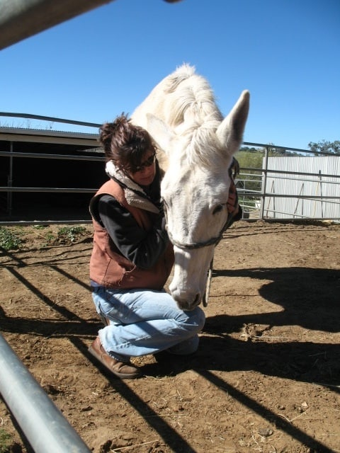 Equine Craniosacral Therapy