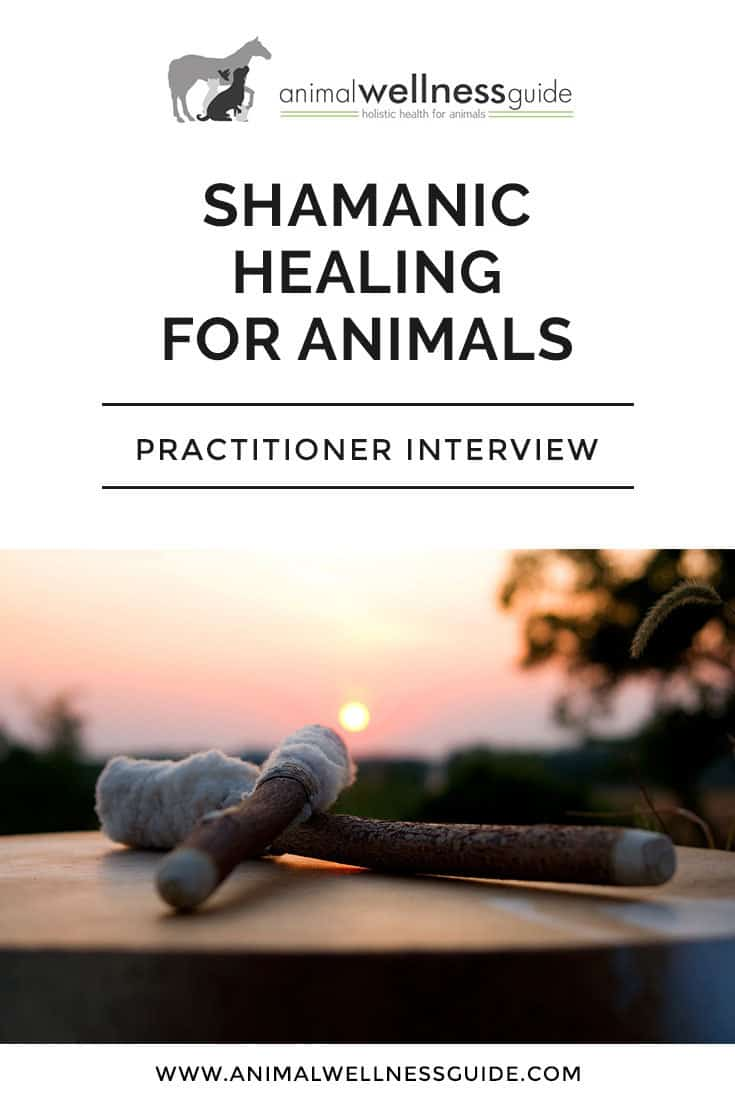 Fascinating interview with Shamanic healer and animal communicator Carla Meeske, where she talks about the concept of Shamanic healing and how it works, her own Shamanic journey, spirit guides, doing Shamanic healing with animals and lots more. A must read!