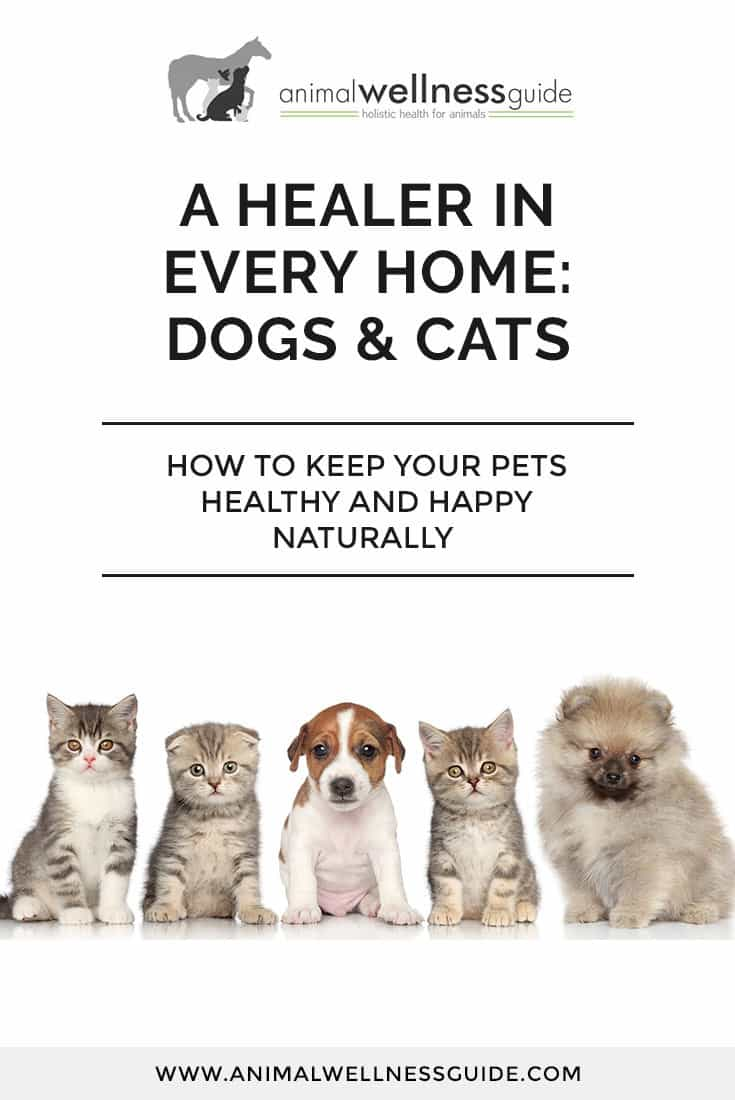 Learn what you can do to keep your pets healthy and happy with the help of natural remedies. This book is packed with great information and amazing stories of recovery, such as the puppy who survived a life threatening allergic reaction thanks to a homeopathic remedy, and a horrific ear infection that was cured overnight.