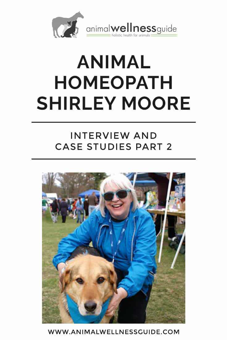 Part 2 in our interview series with animal homeopath Shirley Moore, where she shares her must have homeopathic remedies for dogs, what to use for the flu and other ailments, and two very interesting case studies.