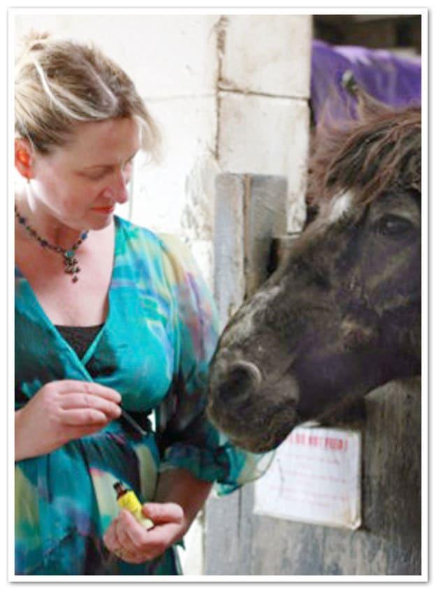 Caroline Thomas, Hoof and Paw Holistic Therapies