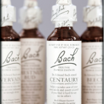 Bach Flower Essences by Cattie Coyle Photography