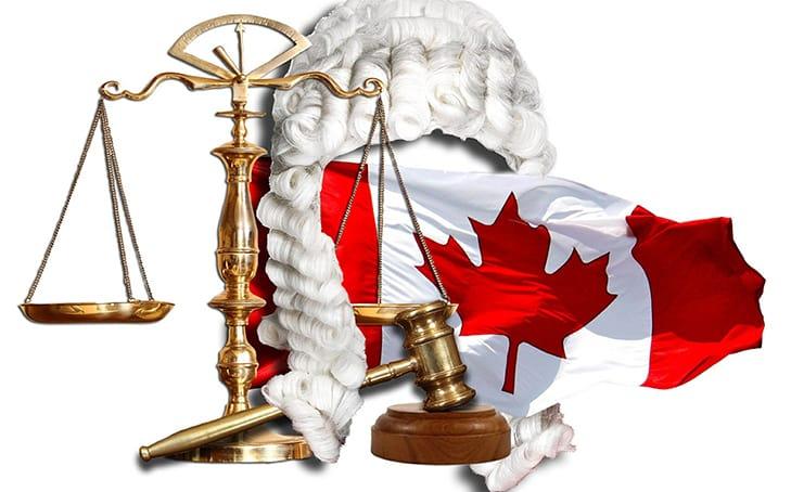 Complementary and Alternative Veterinary Medicine in Canada