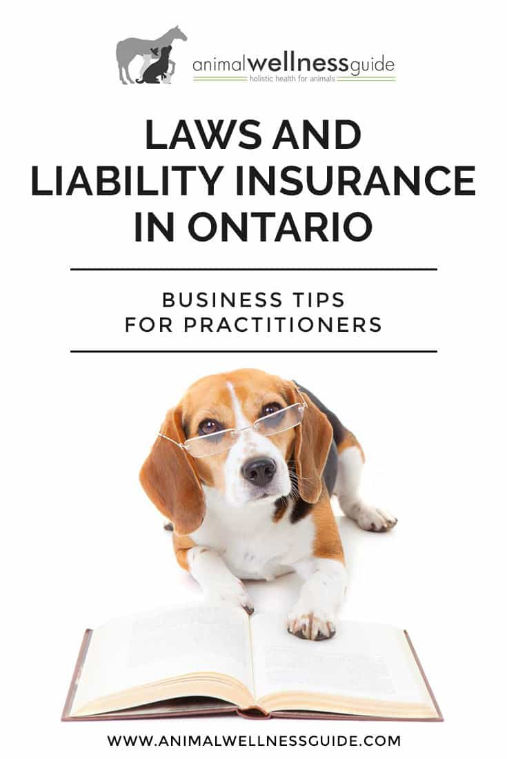 Q&A about the regulations surrounding equine massage in Ontario and where horse and dog body workers can get business liability insurance.