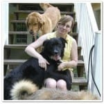 Lisa Ruthig: Should Alternative Practitioners Ask for Veterinary Consent?