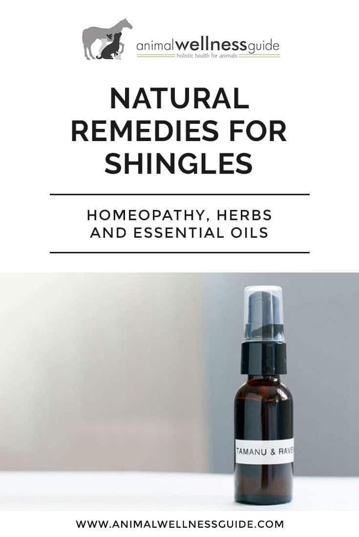 Natural shingles treatment: How to get rid of shingles and ease the pain with the help of homeopathy, herbs, and essential oils.
