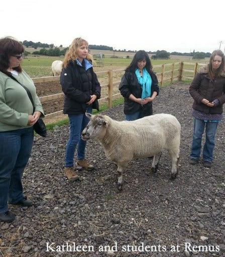SARA Animal Reiki Training in England September 5-8