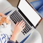 How to Start A Blog: Posts, Categories and Keywords by Animal Wellness Guide