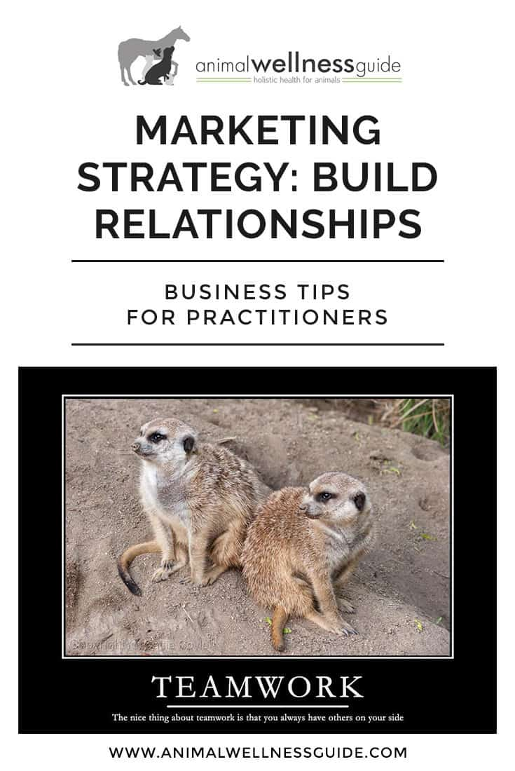 Why working with other businesses is a fantastic marketing strategy, and how to build business relationships that benefit everyone involved.