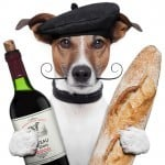Dog-w-wine-and-bread