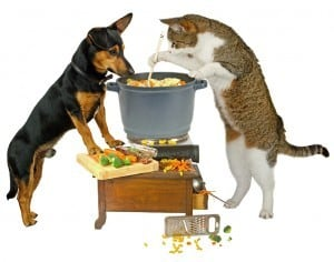 Home-cooked-food for dogs and cats