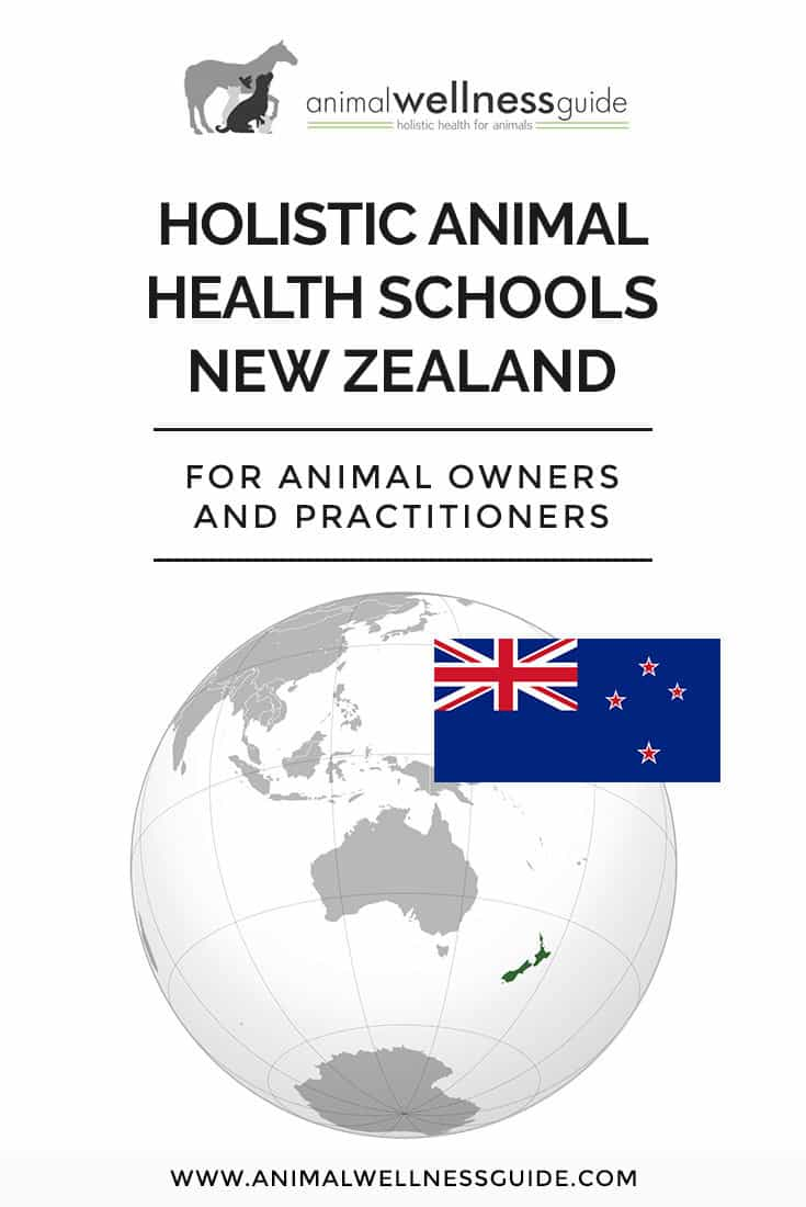 Interested in a holistic animal health career in New Zealand? Check out our list of schools that teach a variety of integrative health therapies for animals (we have school lists for USA, Canada, UK, Australia, and Europe too!)