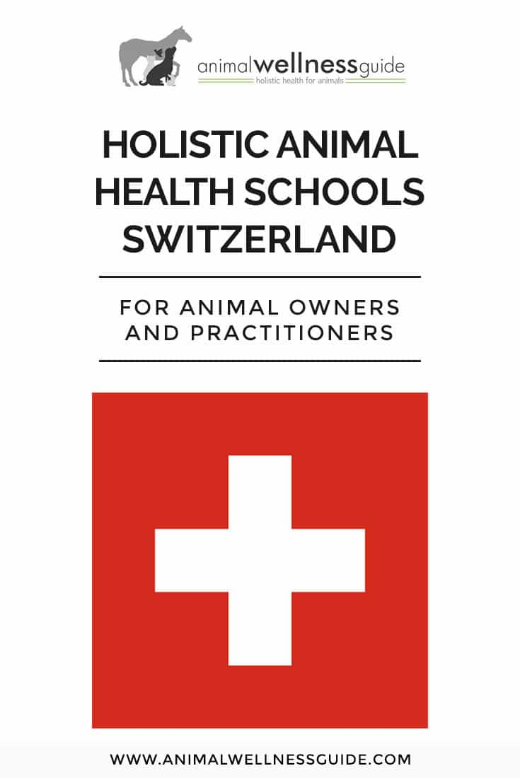 List of holistic animal health schools in Switzerland where you can learn animal massage therapy, acupressure, Reiki, homeopathy, animal communication, and lots more.