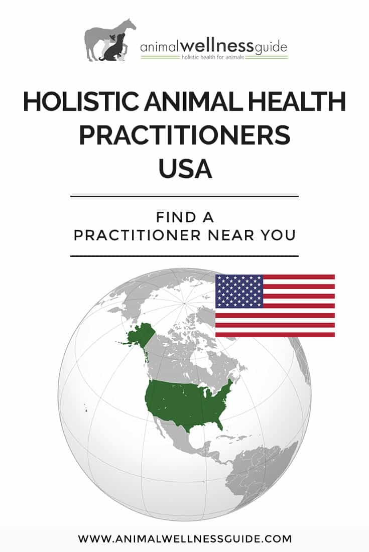 Find a holistic practitioner for your animals in our directory (or sign up to get listed)