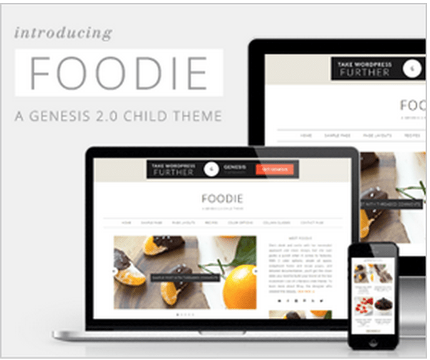 How To Start A Blog Part IV: Selecting a Theme