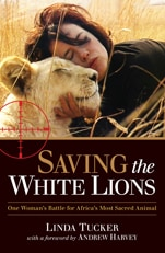 Saving-the-White-Lions