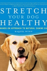 Stretch Your Dog Healthy