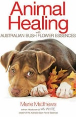 Animal-Healing-with-Australian-bush-flowers