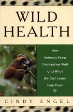 Good books: Wild Health - How animals heal themselves