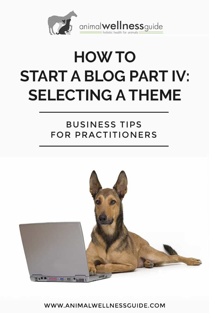 Blogging for Beginners. How to Start a Blog Part 4: Choosing a WordPress blog theme