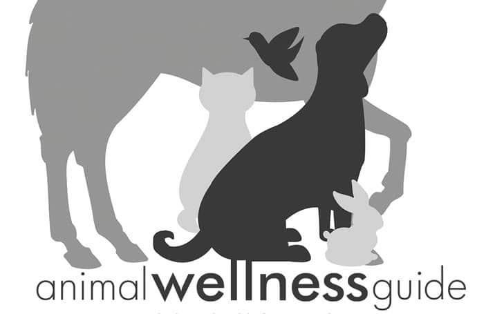 Welcome To Animal Wellness Guide The New Home Of Animal