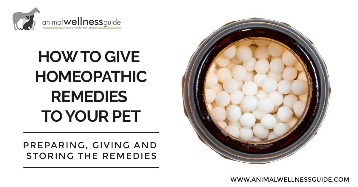 How To Give Homeopathic Remedies To Your Pet Animal