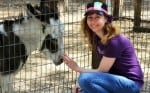 8 Questions to Ask Before Hiring an Animal Reiki Practitioner or Teacher