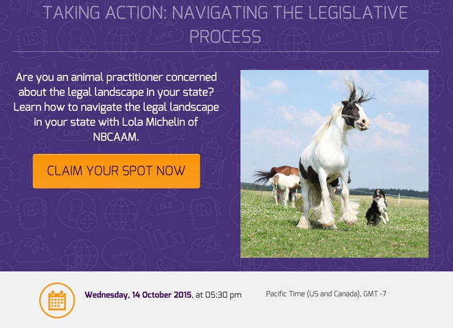 Animal Massage Legislation Webinar
