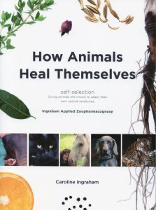 How Animals Heal Themselves: Using Essential Oils with Animals