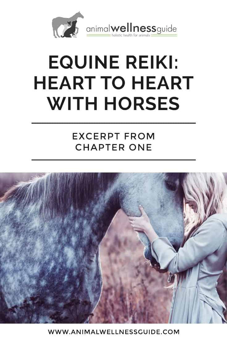 See how Reiki healing helped a rescued horse in this first of a 2-part excerpt from Kathleen Prasad's equine Reiki book