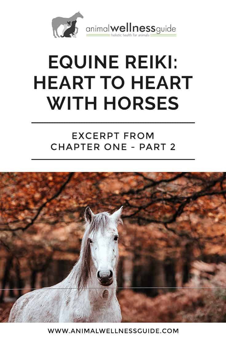 Reiki healing for beginners. In this second part of an excerpt from Kathleen Prasad's book on healing horses with Reiki, titled Heart to Heart with Horses, she takes you step by step through a reiki healing session and also shares an amazing case study.