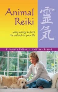 Animal Reiki- Using Energy to Heal the Animals in Your Life